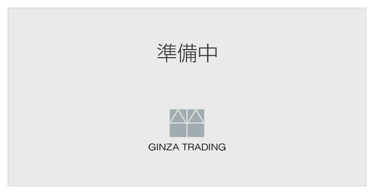 Ginza Trading 準備中